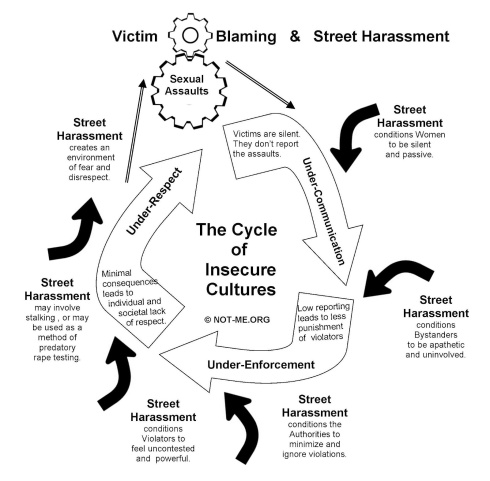 Cycle of Insecure Cultures